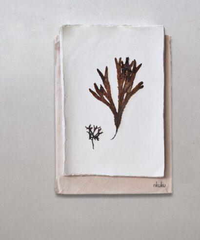bomullspapper anteckningsbok